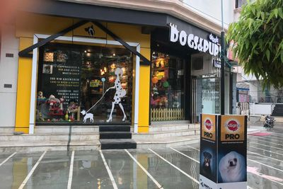 5 Pet Stores In Lucknow Which Should Be Your Go To Spot For Your Fur Babies Knocksense