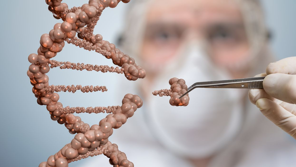 4 key questions to challenge your views on genetic engineering