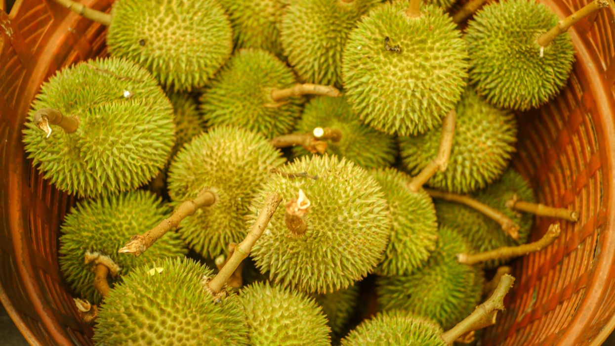 basket of durian fruit