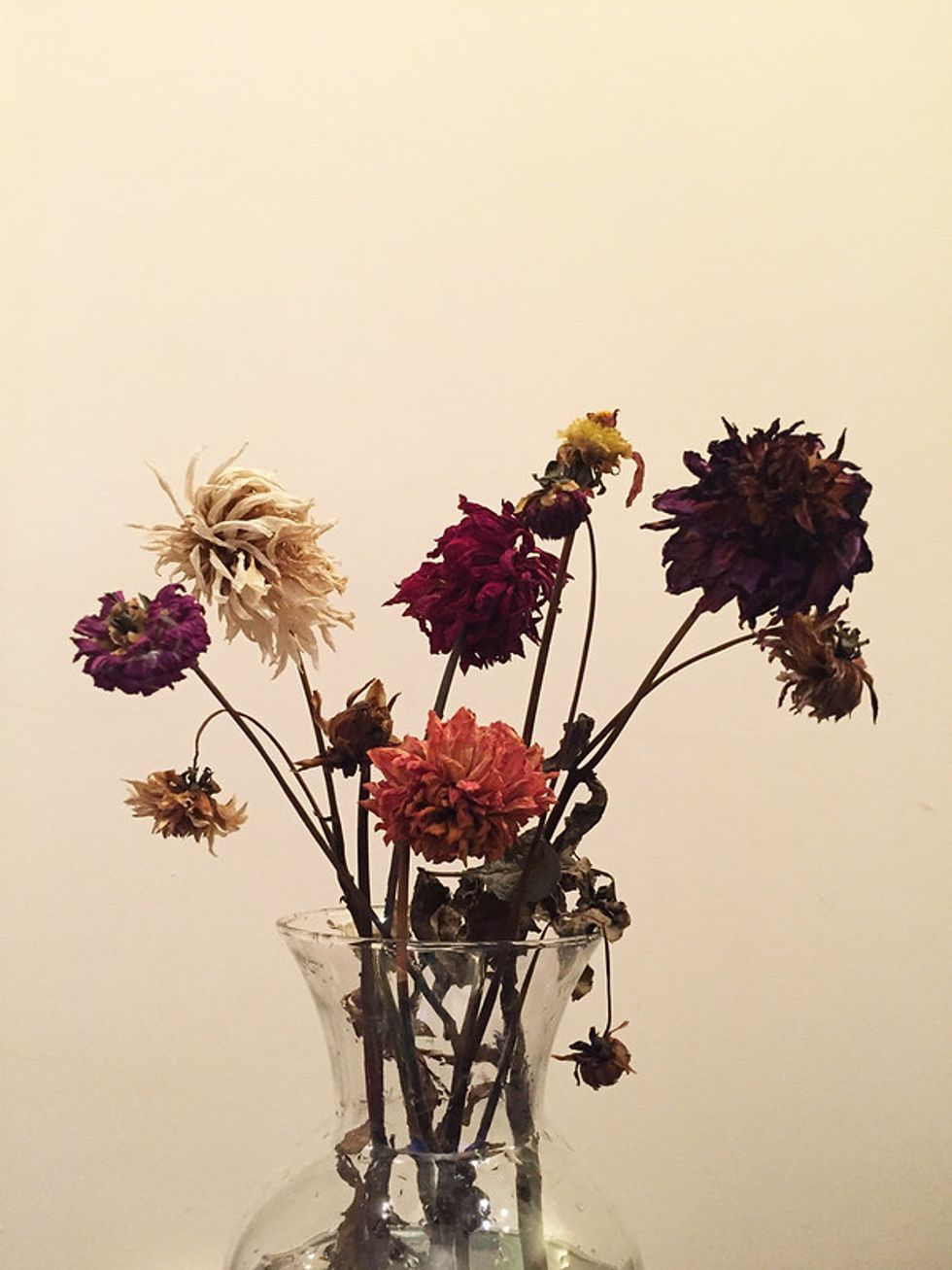 A vase of dead flowers