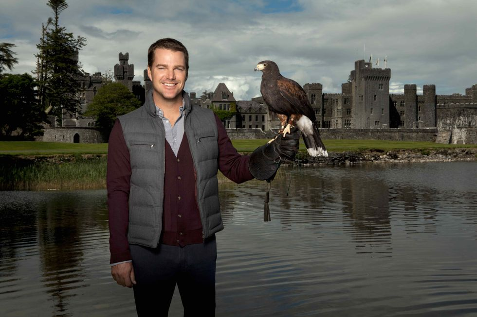 Chris O'Donnell tries falconry while visiting Ireland.
