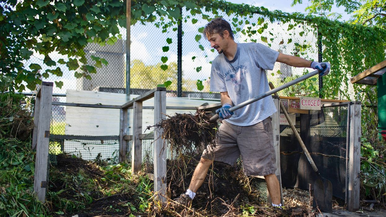 Composting Could Become Mandatory in New York