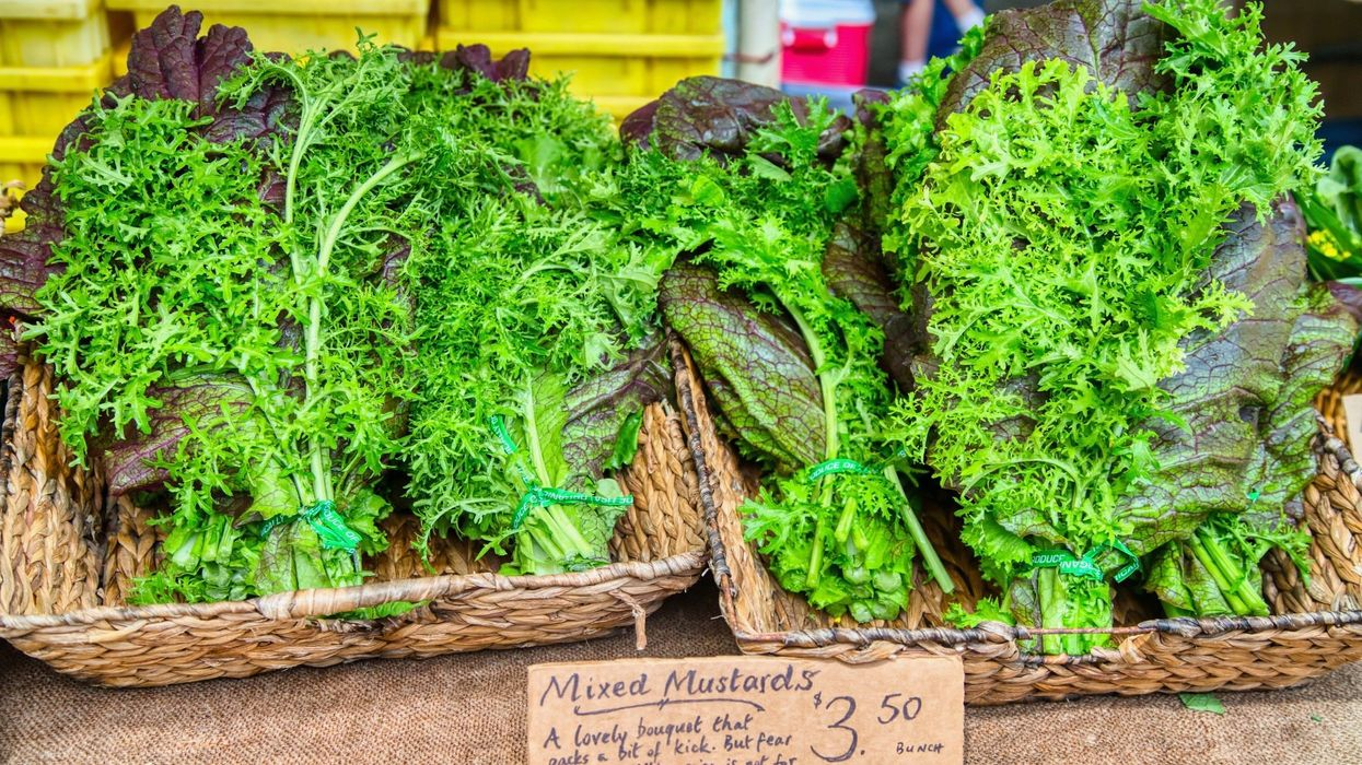 Mustard Greens: Nutrition Facts and Health Benefits