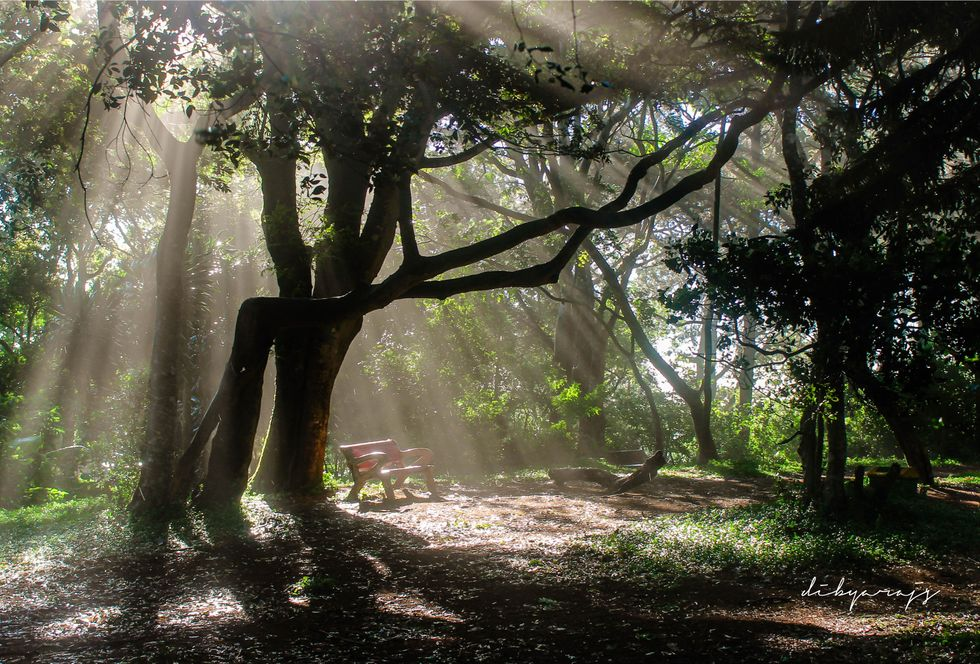 3 Reasons to Spend More Time Outside