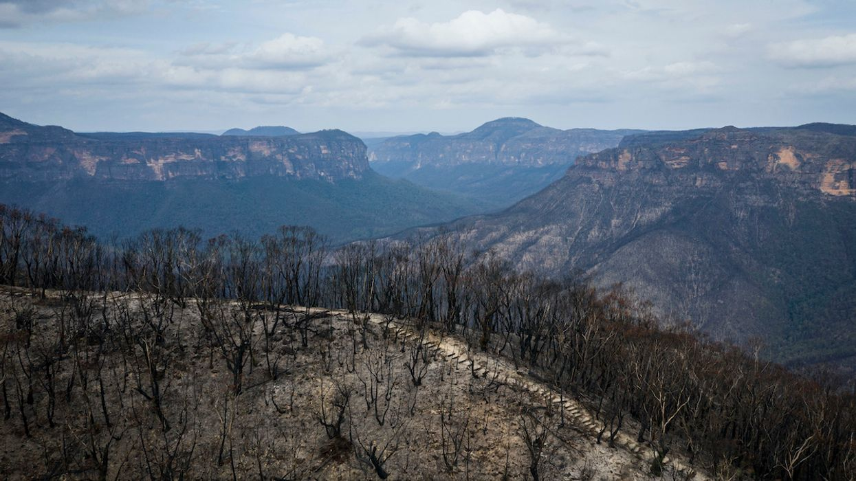 Australia Wildfires Were Far Worse Than Climate Models Predicted