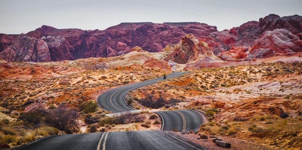 Life is a Bumpy Road.