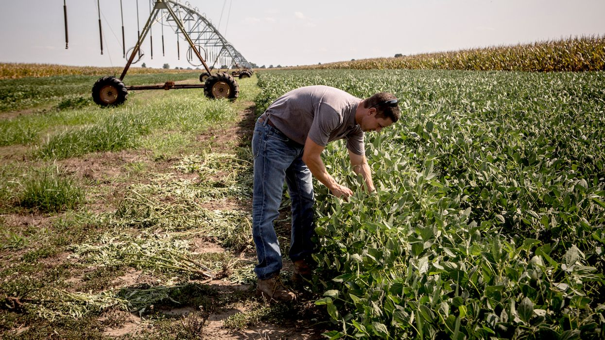 Internal Monsanto Documents Show It Knew of Predicted Damage to U.S. Farms