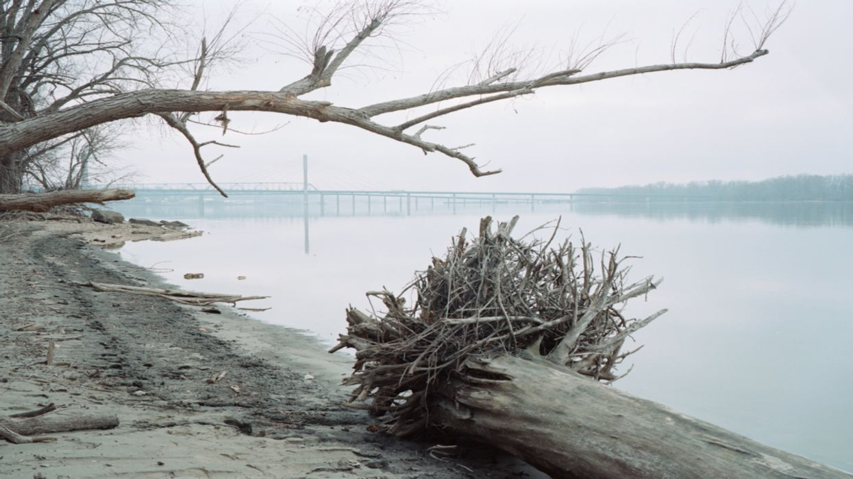 Fossil Fuels Add to World's Marine Dead Zones