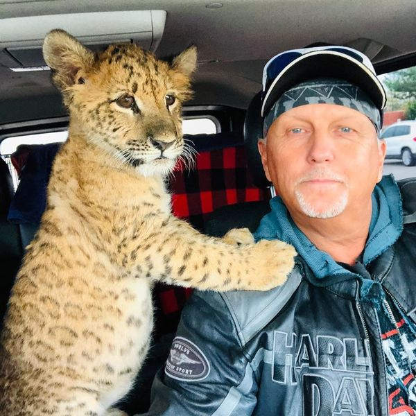 A 'Tiger King' Sequel Is Coming