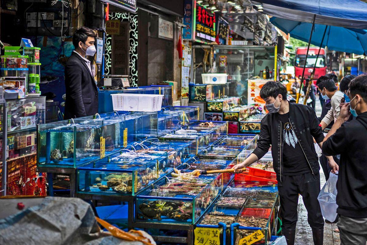 La Cina ha riaperto i mercati dell'orrore