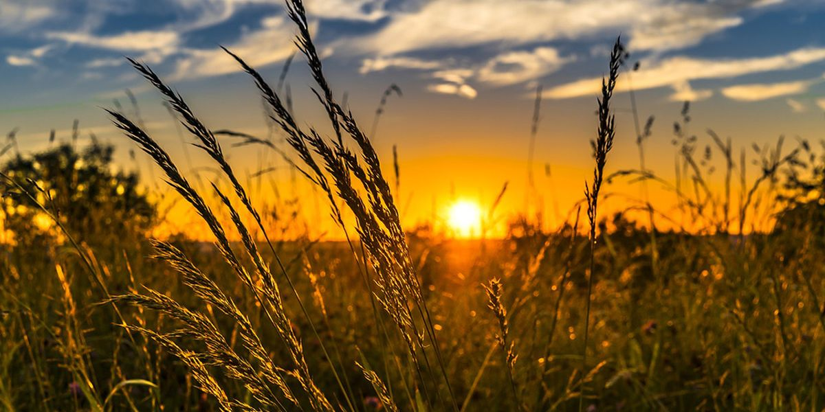 Europe's Hot Summer Weather Could Worsen the Effects of COVID-19 - EcoWatch