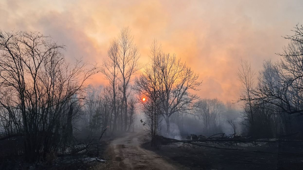 Chernobyl Wildfires Could Spread Radioactive Particles