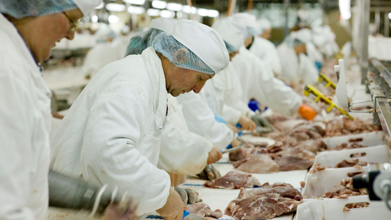 Meat Processing Plants Close as Working Conditions Encourage Spread of Coronavirus
