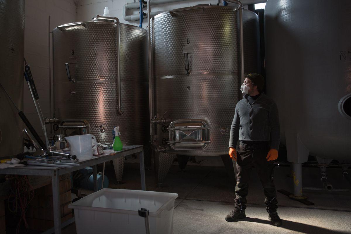 Cantine in crisi, vino di qualità senza mercato