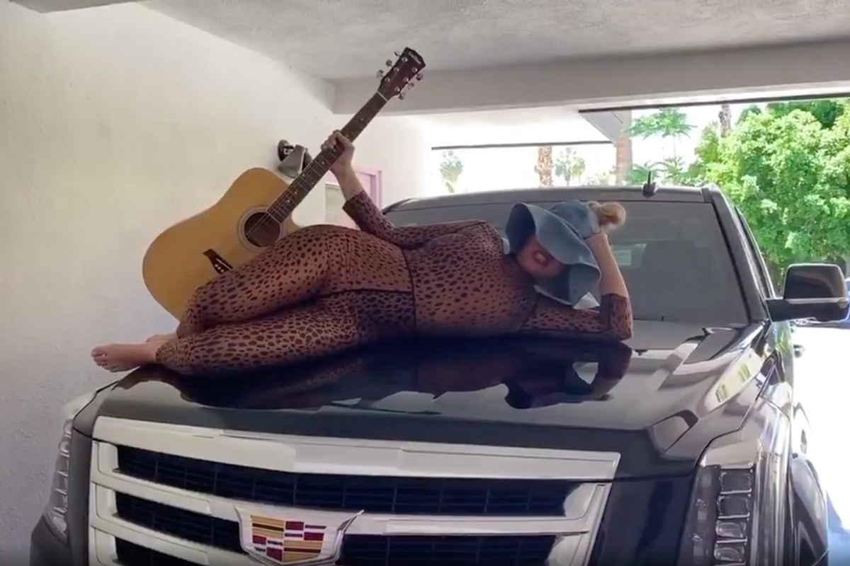 Listen to Sia's 'Tiger King' Parody of 'Savage' for Charity