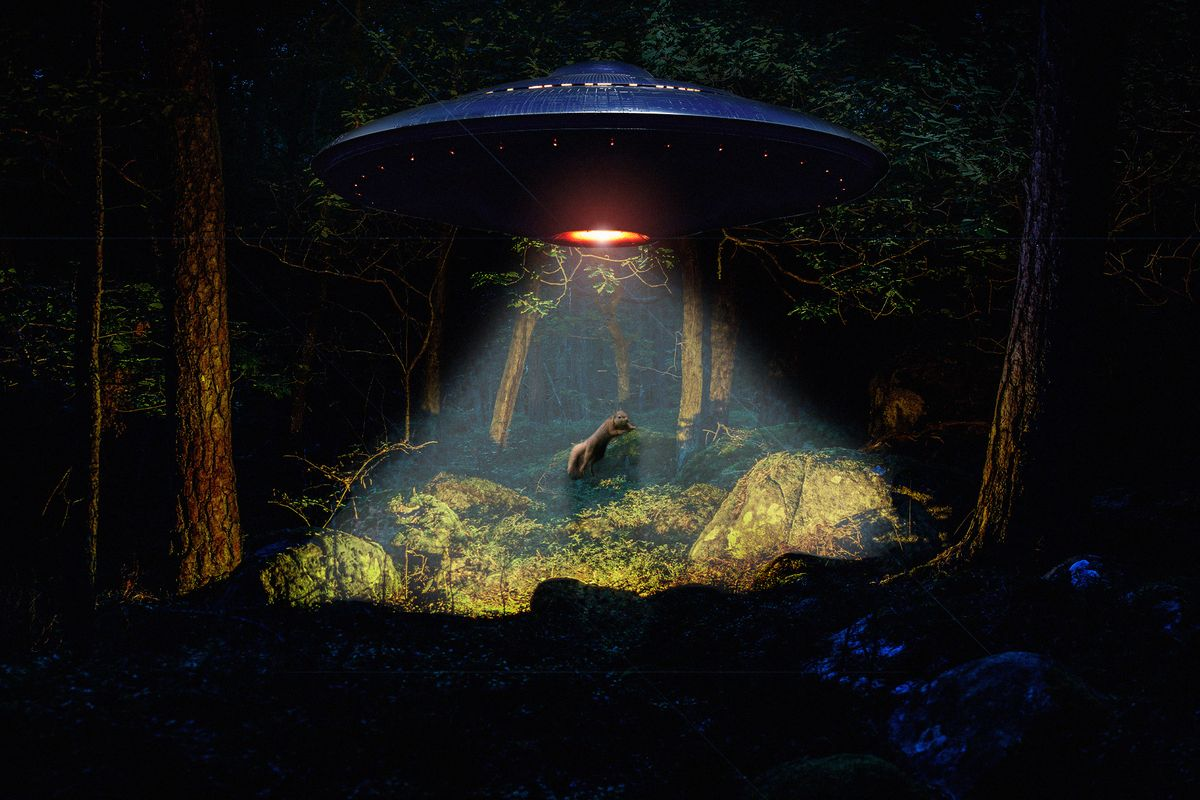 The Pentagon Just Released Tom DeLonge's UFO Footage