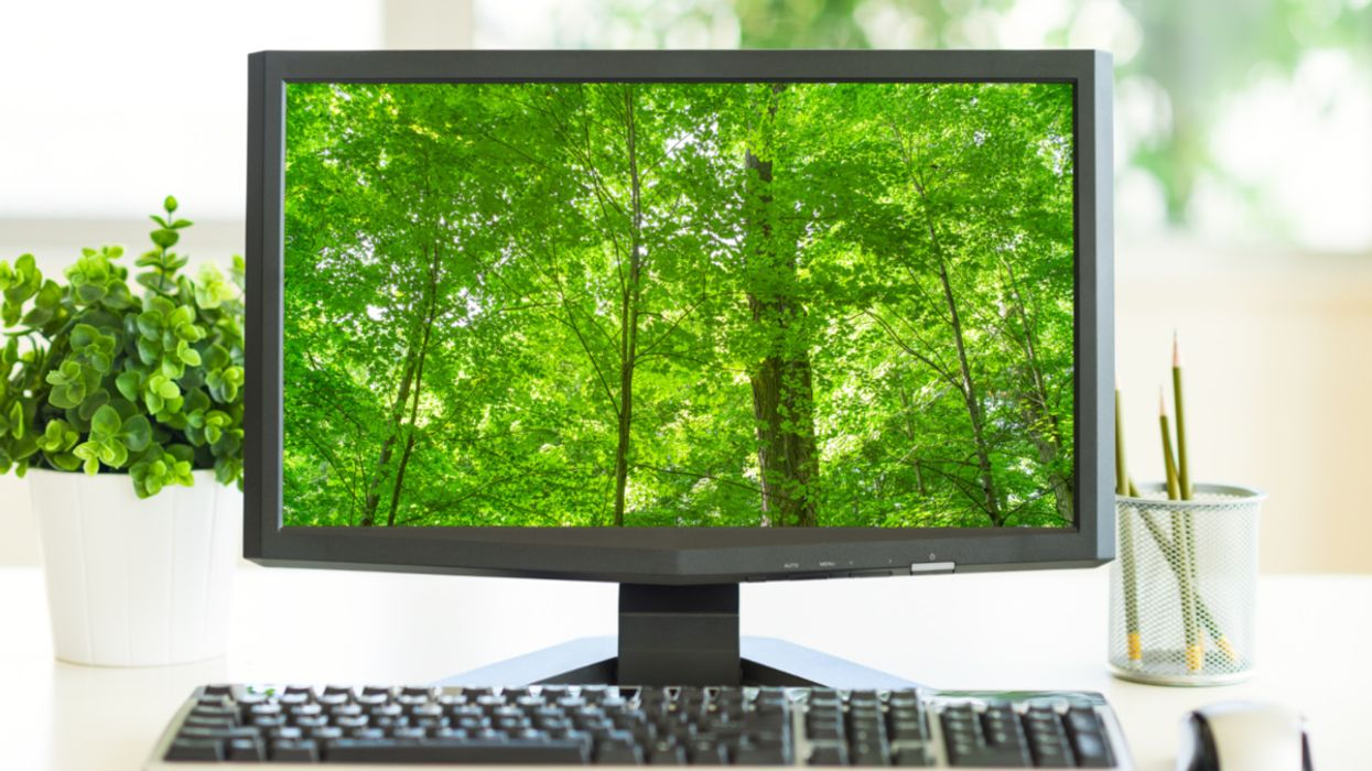 Can't Go Outside? Viewing Nature on a Screen Can Improve Your Mood