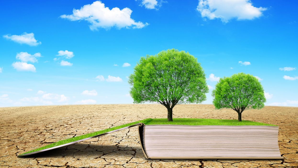 The 10 Best Books On Climate Change, According to Climate Activists