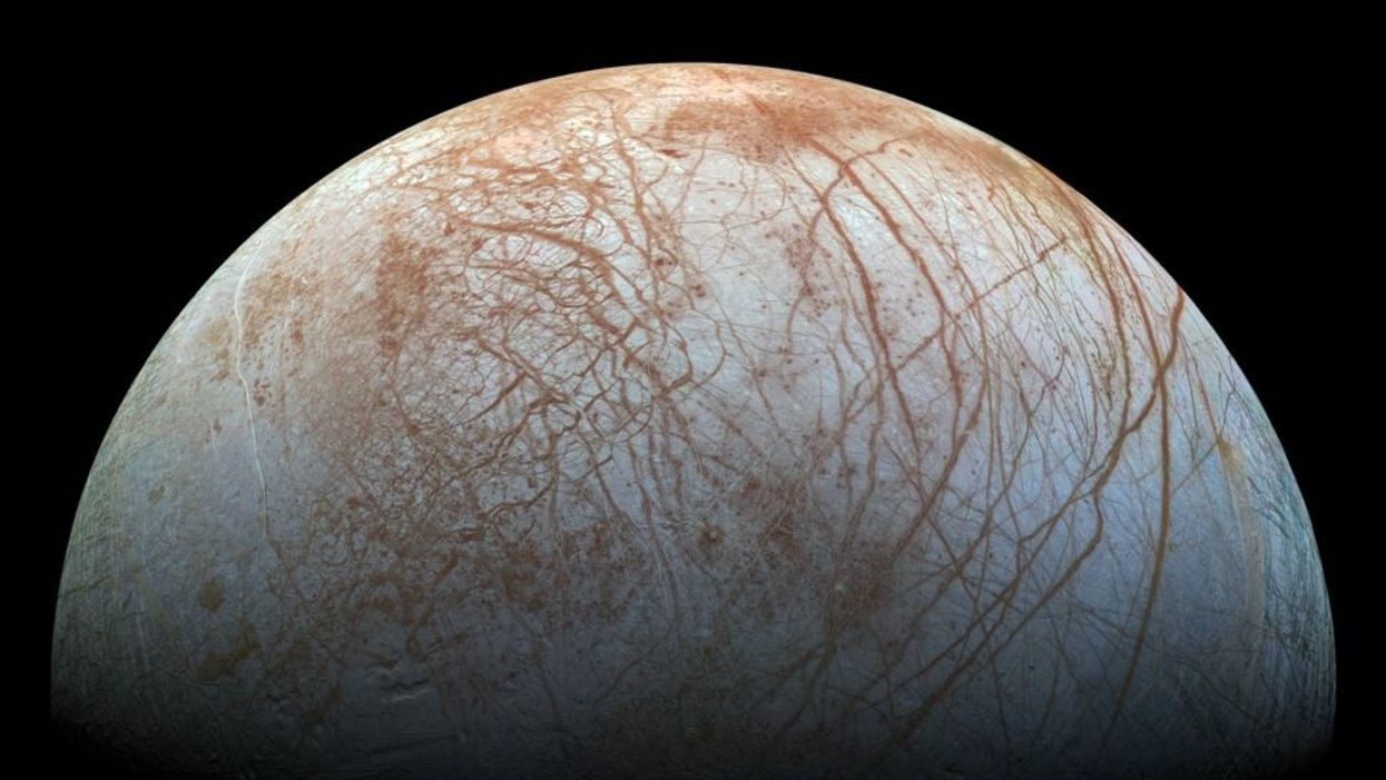"Scientist claims life on Jupiter's moon could have ""octopus-level intelligence"""