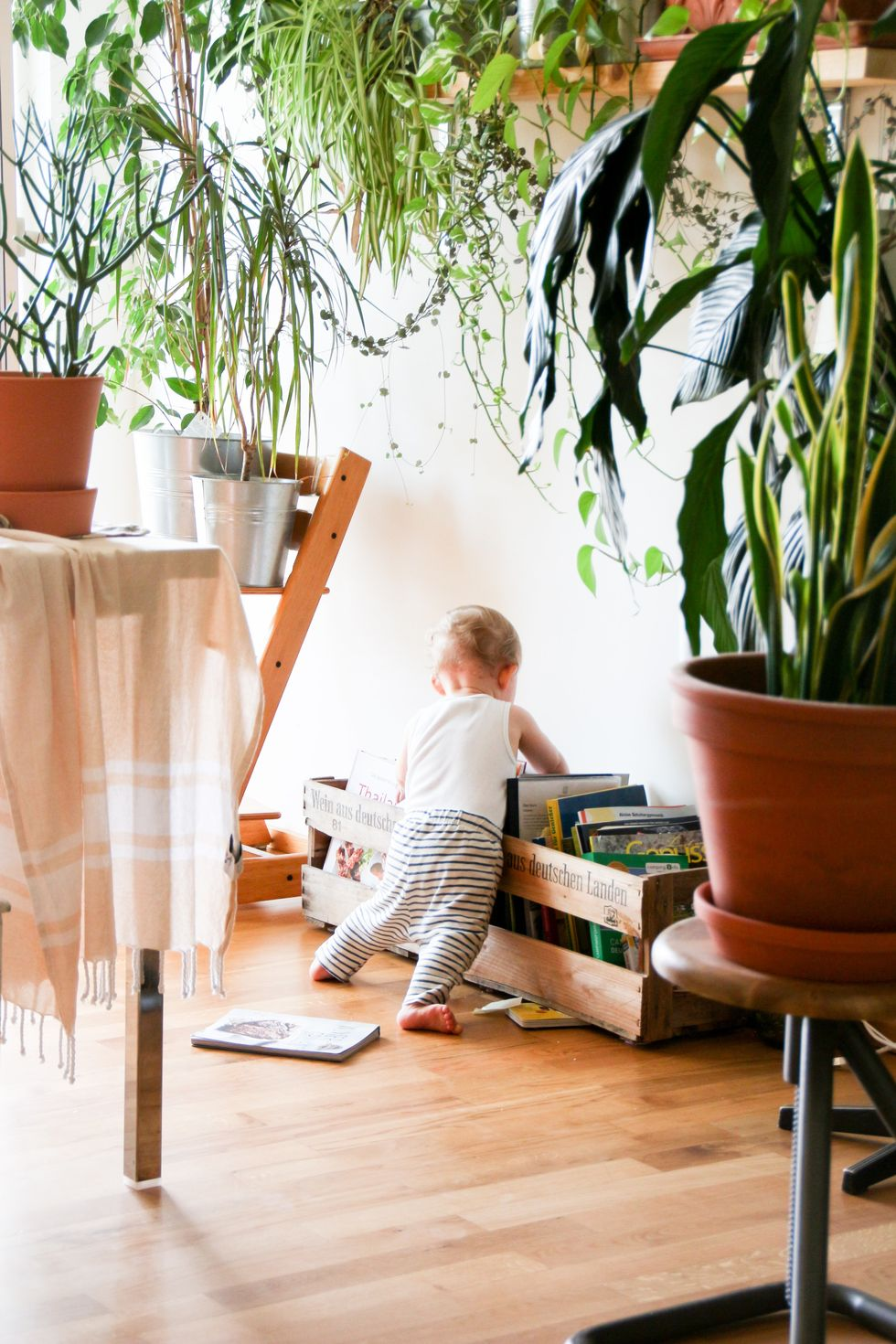 Home libraries boost child cognition. These are the best books for every age