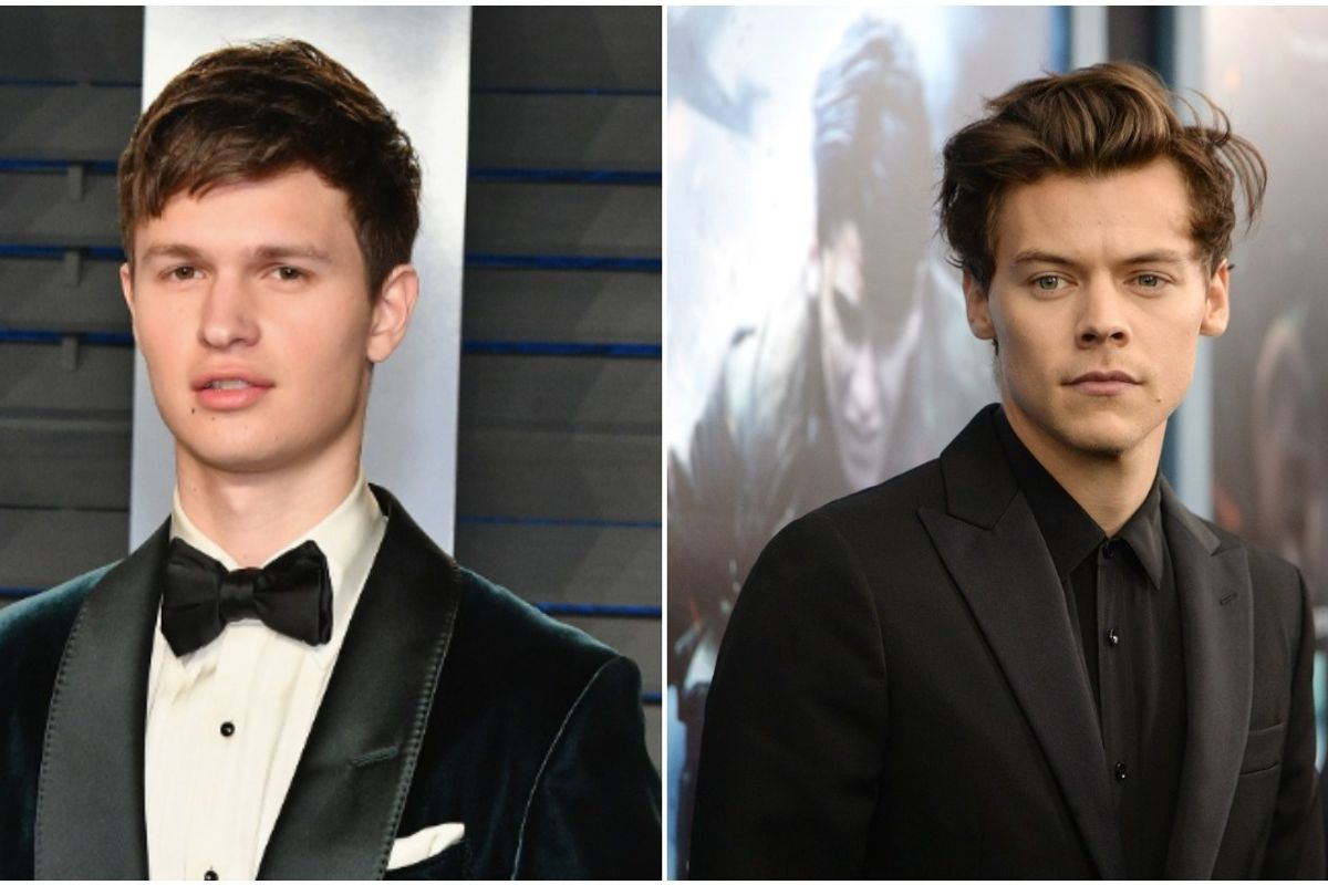 Ansel Elgort Comes For a Harry Styles Stan on Twitter