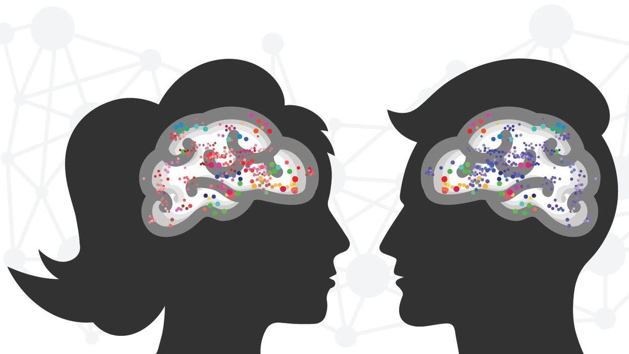 concept of love neurons what happens in the brain when we are reunited with loved ones