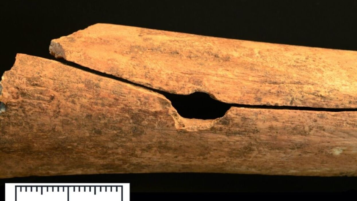 Study: Medieval arrows were as damaging as gunshots