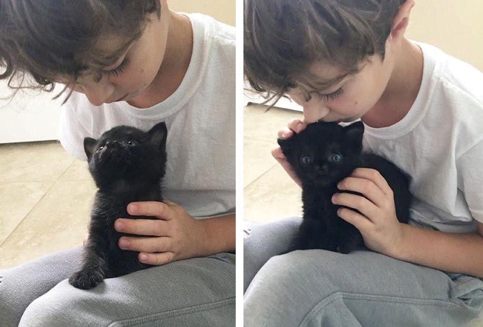 cute nose, special kitten, hug, Aela