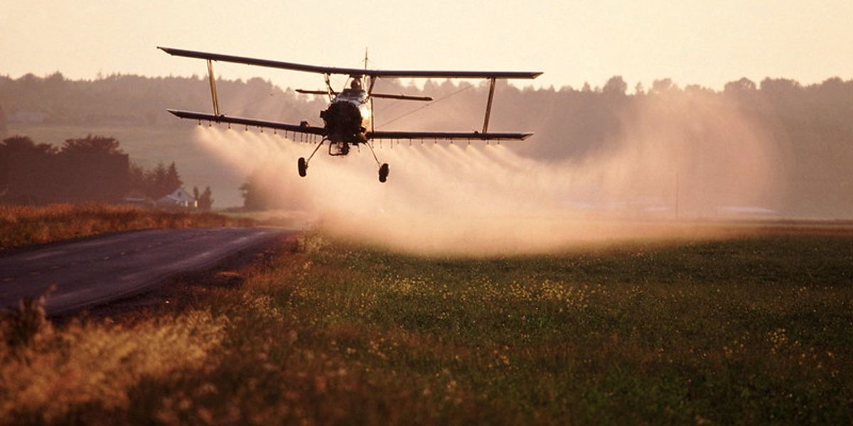 EPA report finds pesticide poses risk to workers, spurs calls for ban.