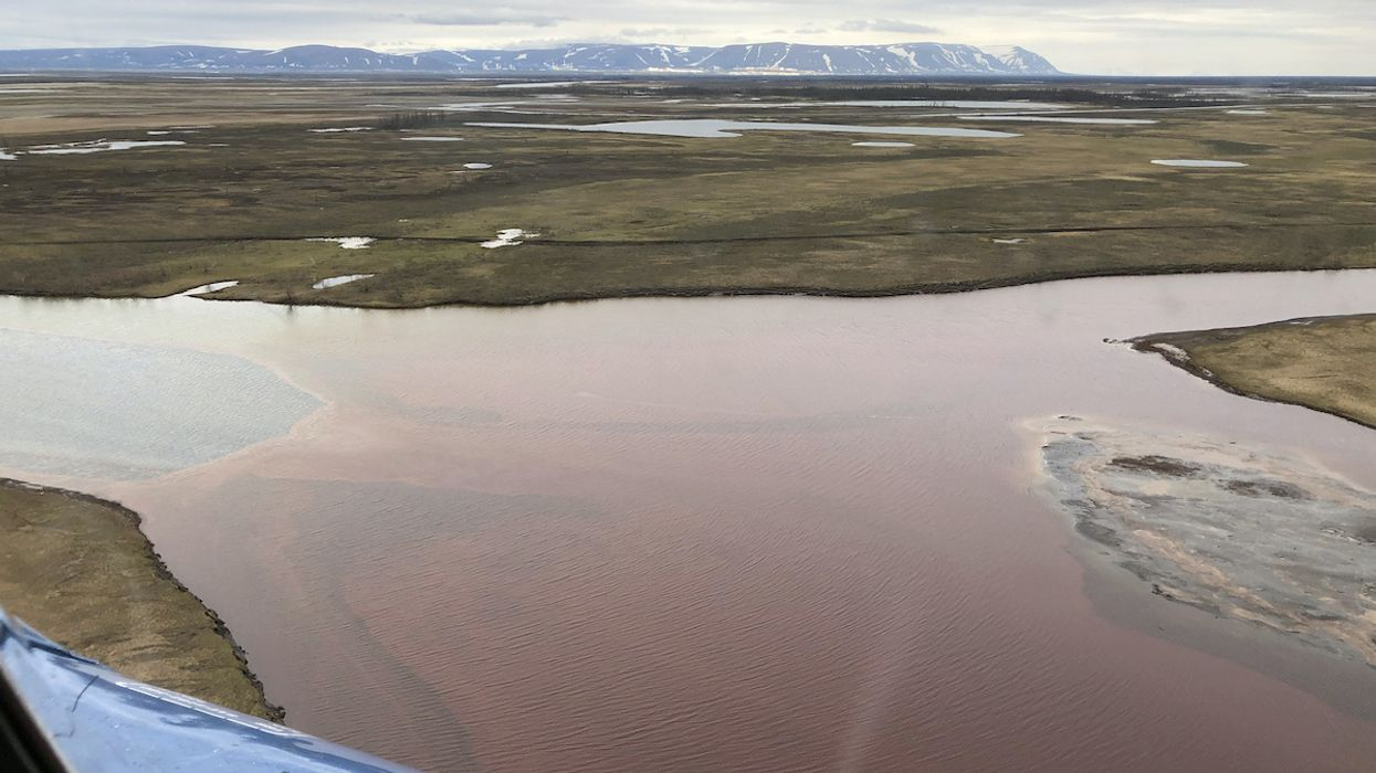20,000 Ton Oil Spill in Russian Arctic Has 'Catastrophic Consequences' for Wildlife