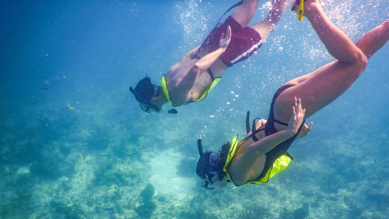 Scuba Diving After Coronavirus? What You Need to Know