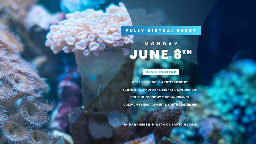 Celebrate World Oceans Day From Home With the UN This Monday