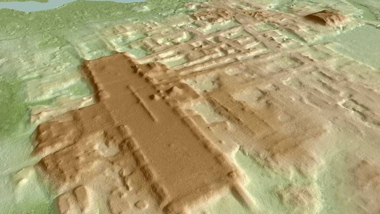 3D image of the site of Aguada Fenix.