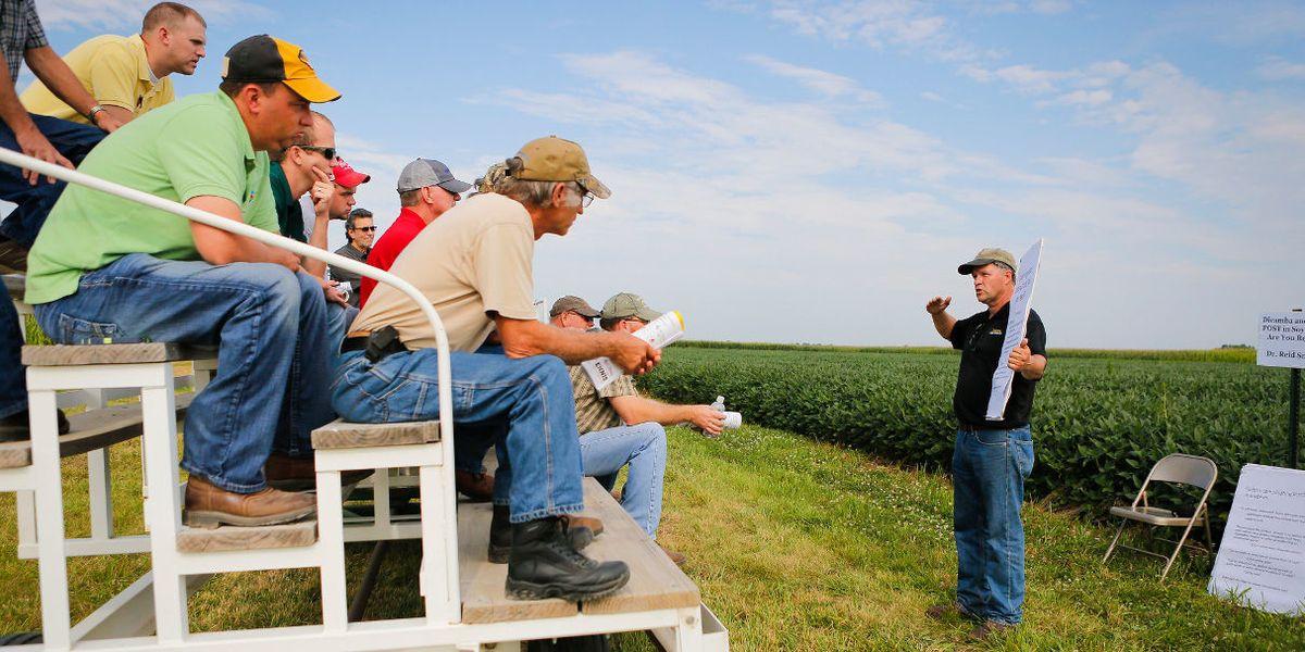 dicamba pesticide farmers