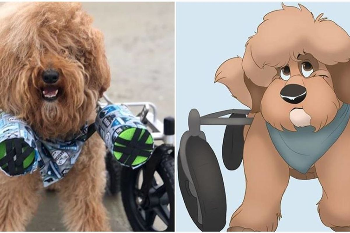 Brilliant artist 'Disneyfies' people's pets into Disney characters