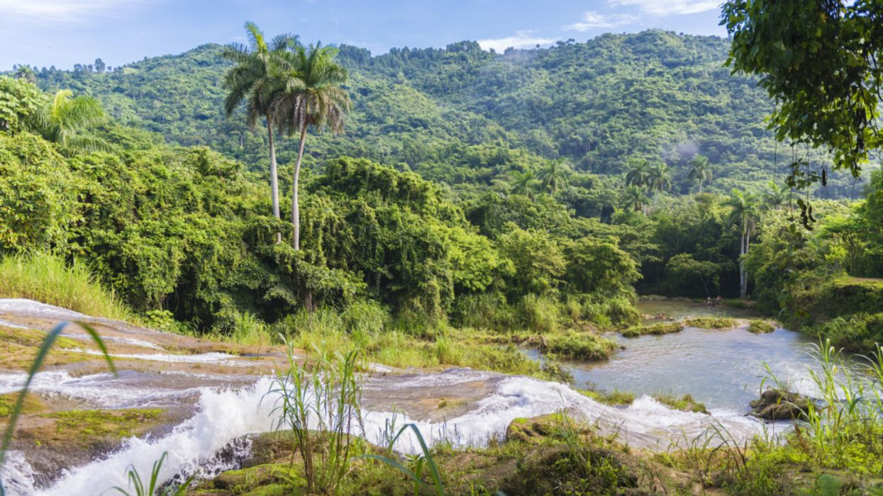 Cuba's Clean Rivers Benefit From Sustainable Agriculture