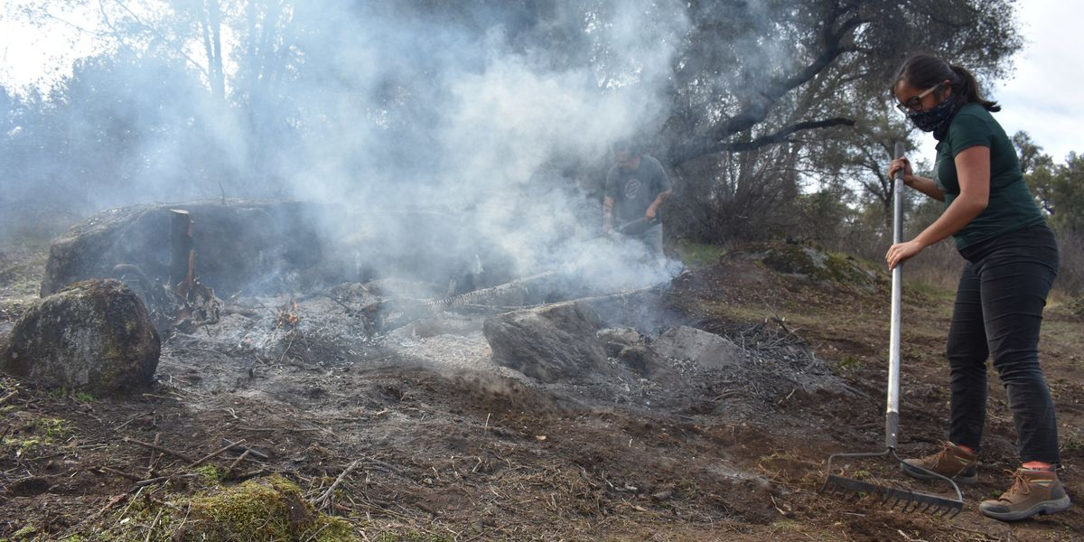 Indigenous wildfire