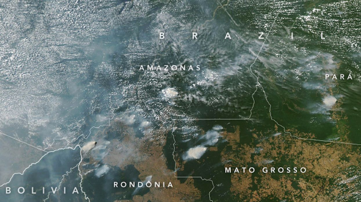 As Amazonian Wildfire Season Approaches, We Must Protect the Vulnerable Forest