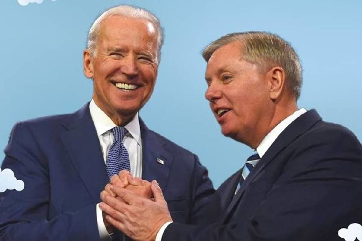 'Greatest campaign ad ever': Lindsey Graham praises Biden while calling Trump a 'bigot'