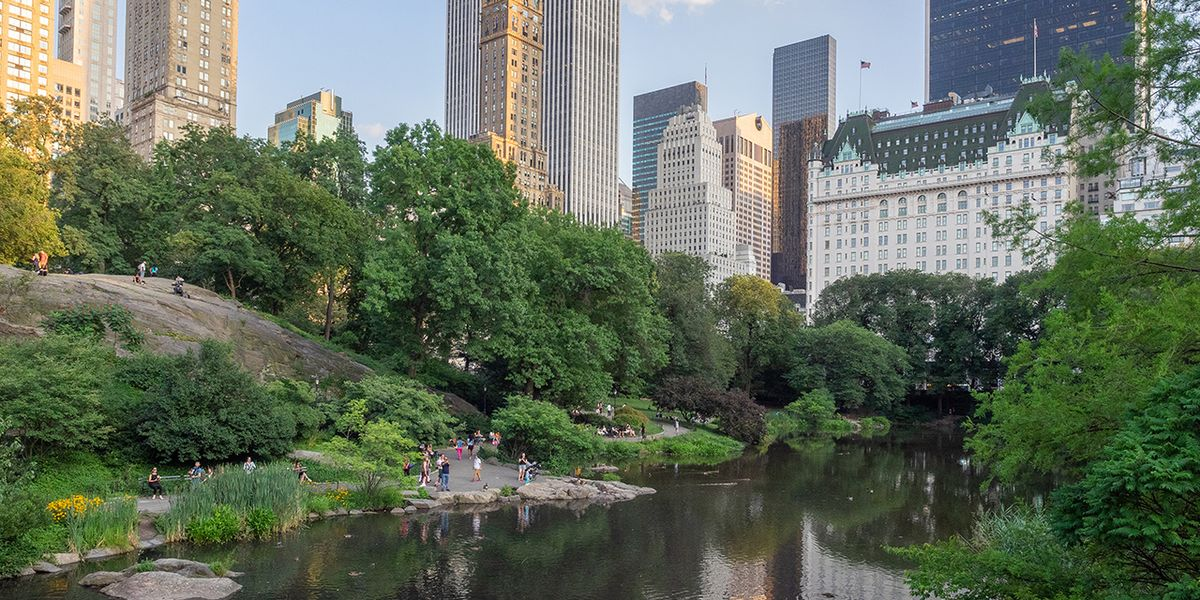 Public Parks Matter More Than Ever During a Pandemic