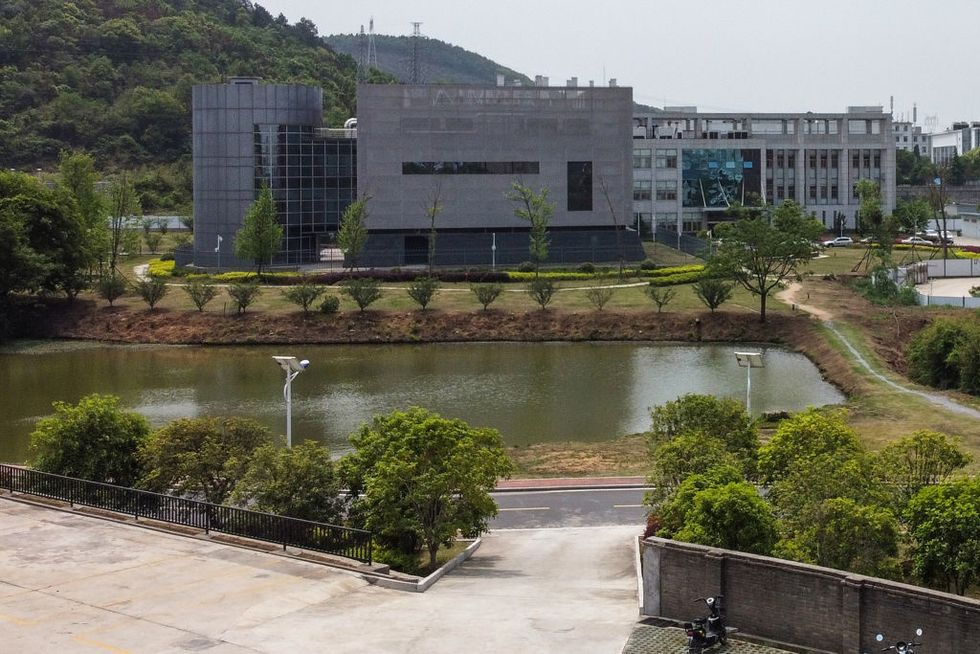 Infamous Wuhan lab admits having three live strains of bat coronavirus on-site