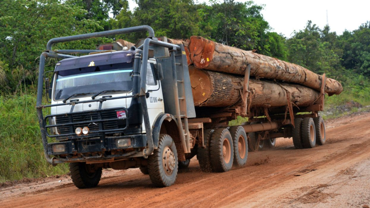 Indonesia Revokes Ending Legality License for Wood Exports