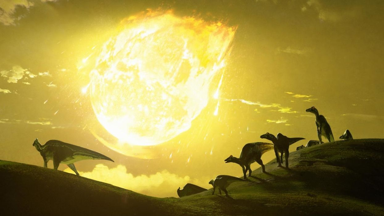 Dinosaur killing meteor hit Earth at 'worst possible angle'
