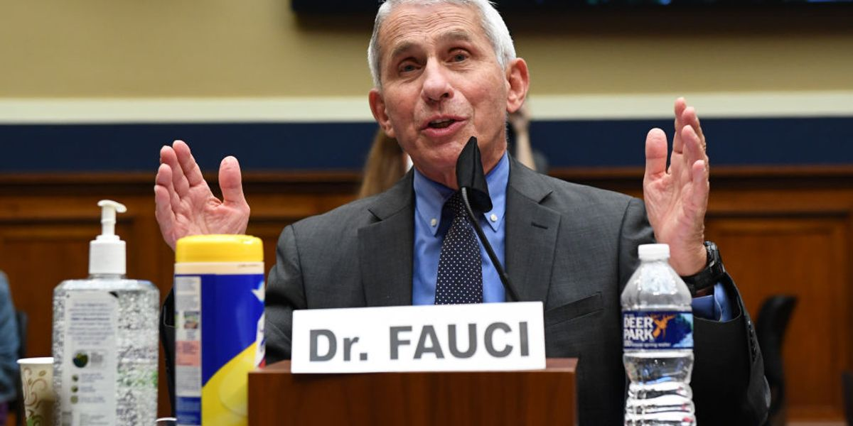 Dr. Anthony Fauci says he hasn't briefed President Donald Trump in at least 2 months, warns COVID-19 really is 'the big one'