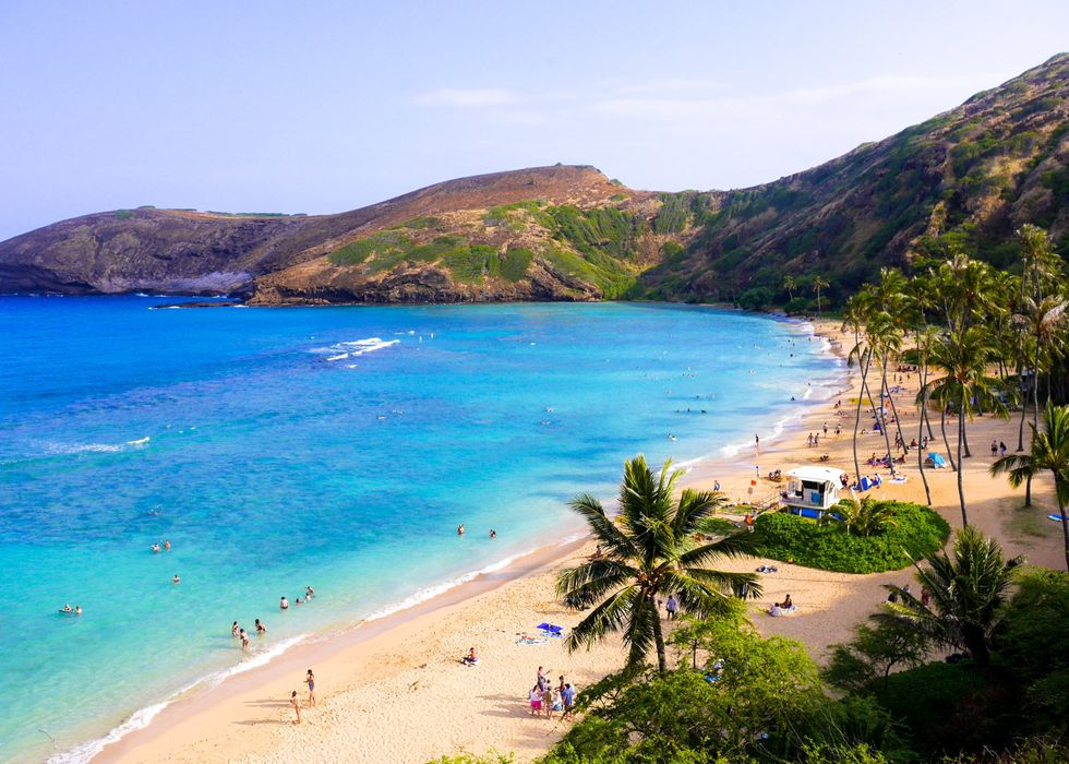 What Incoming Freshmen Can't Learn About University Of Hawaii at Mānoa On A Zoom Call