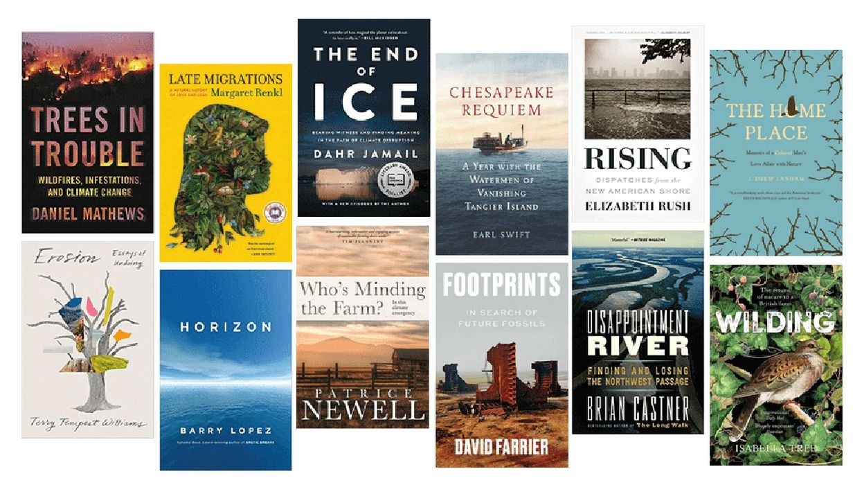 12 Books for 'Virtual' Summer Travels