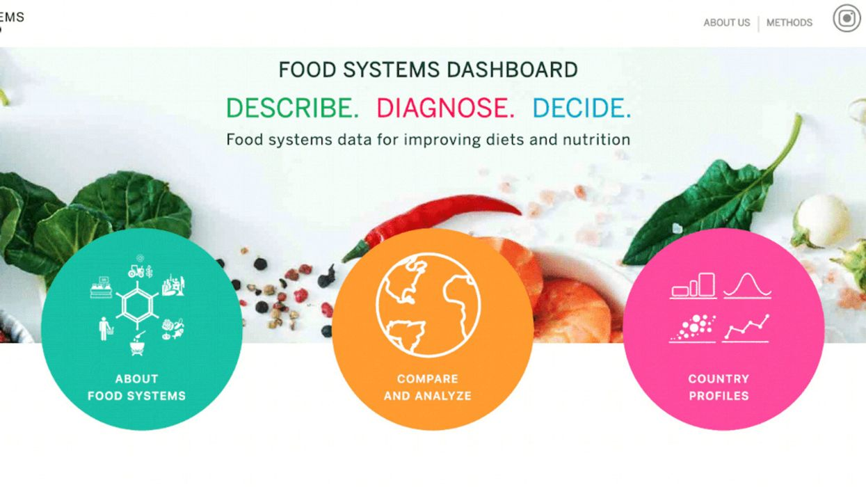 New Tool Enables Countries to Improve Their Food Systems