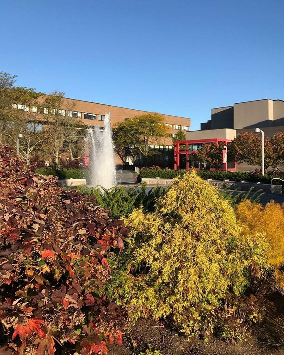 The ABCs Of Stony Brook University