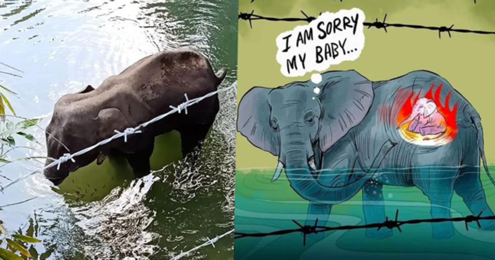 Artists Pay Emotional Tribute to Pregnant Elephant That Die After Being Fed Pineapple With Firecrackers Inside