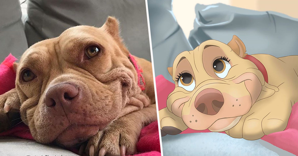 People Send Pictures of Their Pets to This Artist and She Disneyfies Them